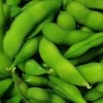枝豆の栄養と効能 食べ過ぎには要注意!