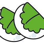 柏餅の葉っぱに意味はあるの?種類が西と東で違う!?