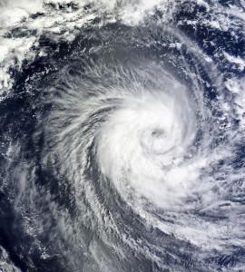 台風 外出 対策